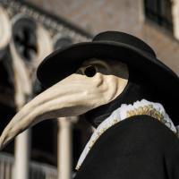 I presunti esperti, peggio della peste
